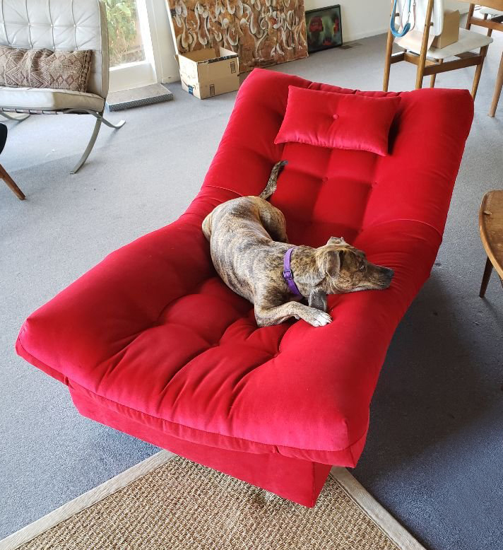 Sofa Upholstery and Design